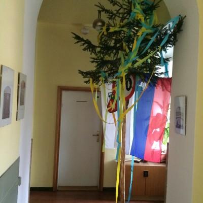 Bogoslovec Branko je za okroglo obletnico dobil mlaj pred vrata sobe :)